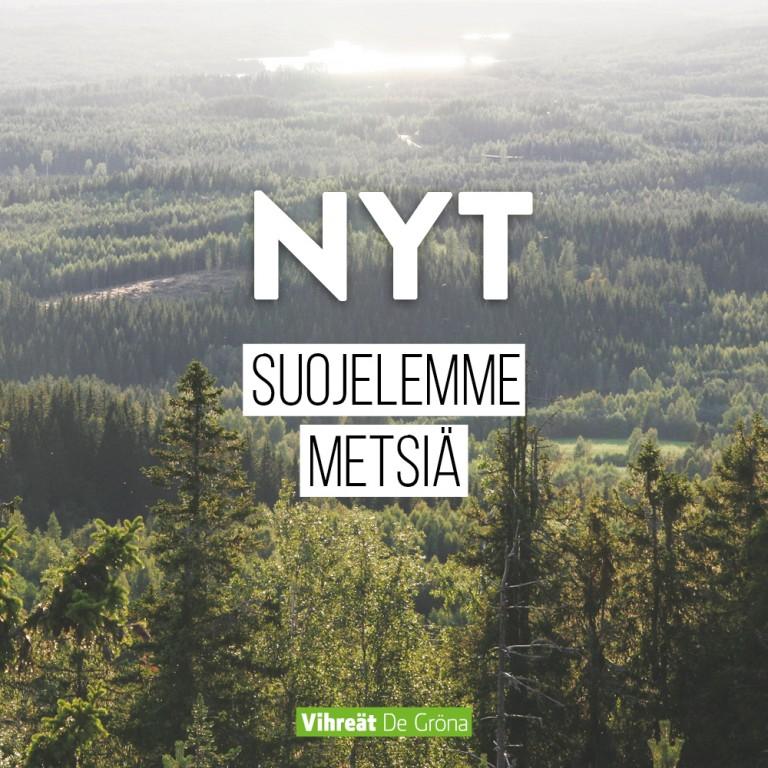 Nyt suojelemme metsiä